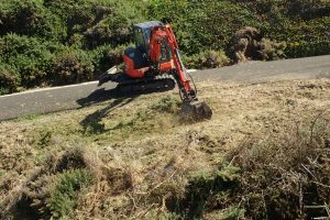 mechanical gorse removal